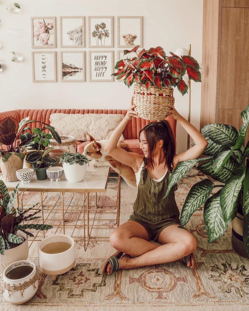 instagram de decoração - sala com mulher segurando vaso com plantas e muitas plantas ao redor