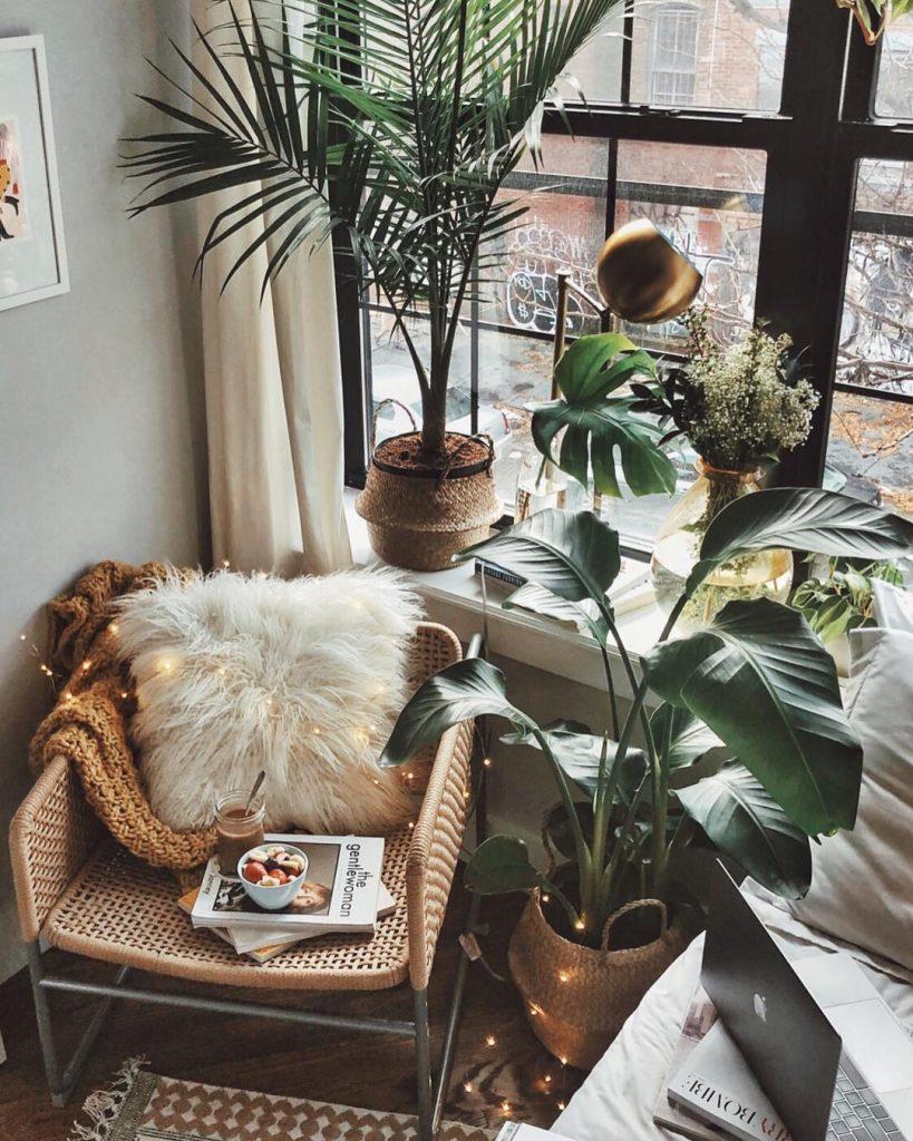 instagram de decoração plantas verdes, cadeira, espaço de leitura